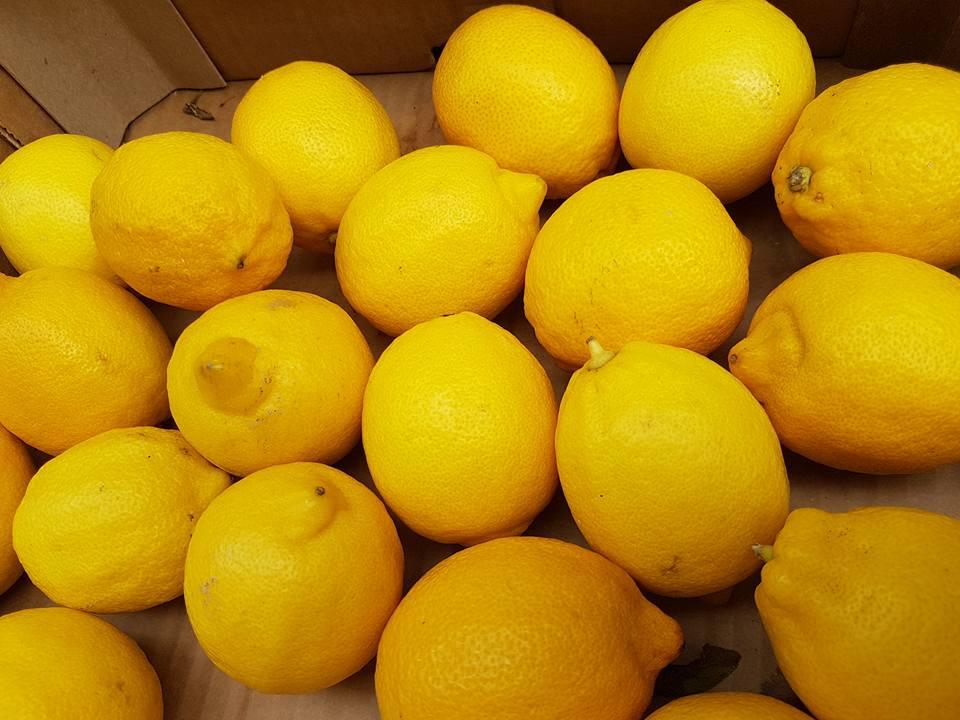 Lemons from Lugano Ticino