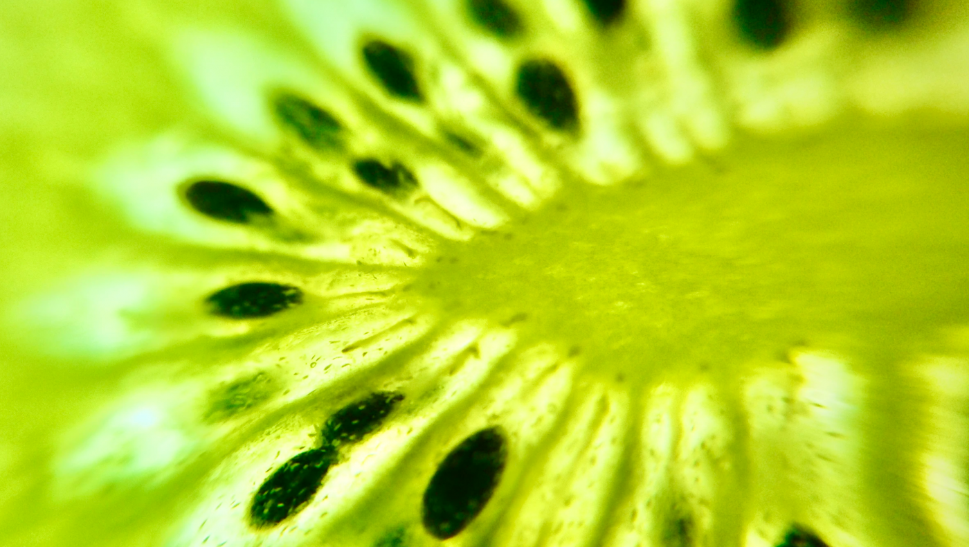 Unsplash Alternative Minerva Kiwi Sep2020